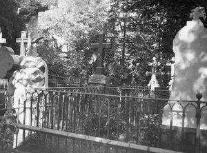Вид на могилы.