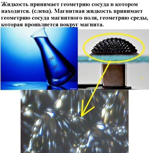 Новые картинки в мироздании 0_99454_9f548ce0_L