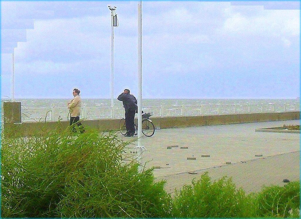 Ветер с моря ... SAM_3777 - 1