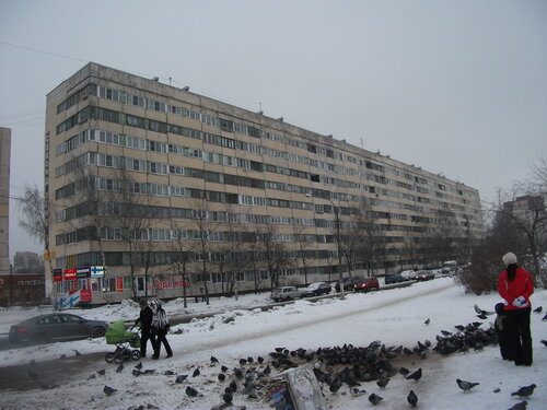 ул. Ольги Форш 13к1