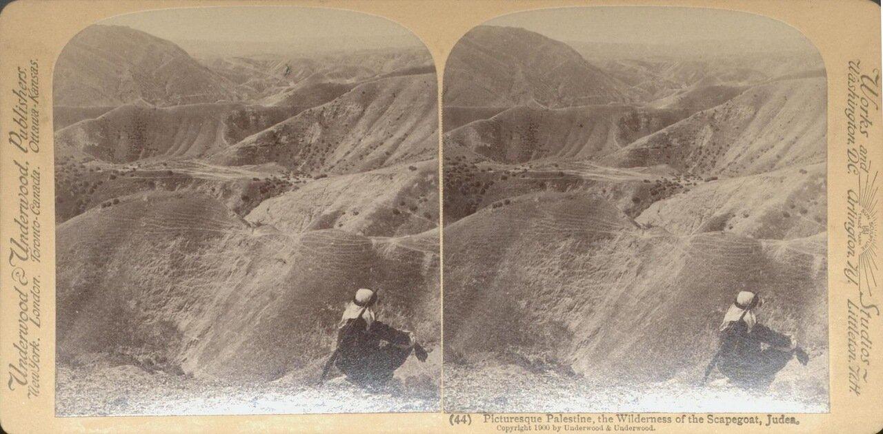 Иудейская пустыня. 1900