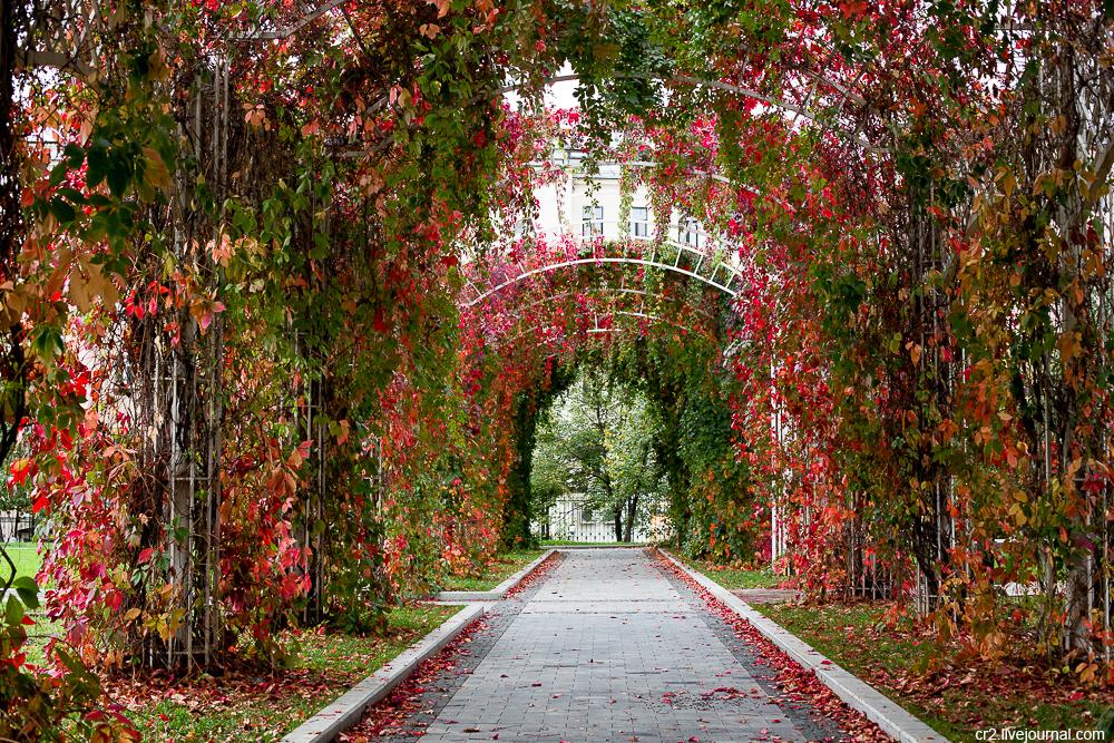 Moscow, Bauman garden