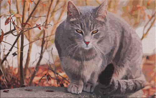 Обои Вязаные кошки