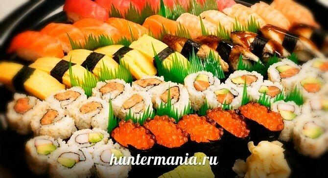 История возникновения суши