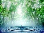 здоровье с канген водой
