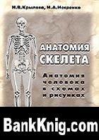 Аудиокнига Анатомия скелета. Анатомия человека в схемах и рисунках. Атлас-пособие