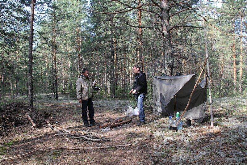 Тент и костёр утром в Медведском бору