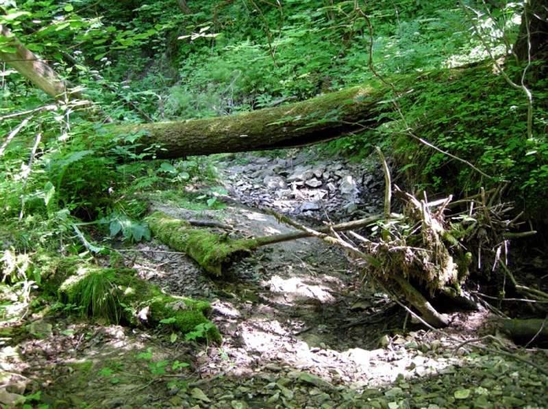 Загадочные места и аномальные зоны Ульяновской области