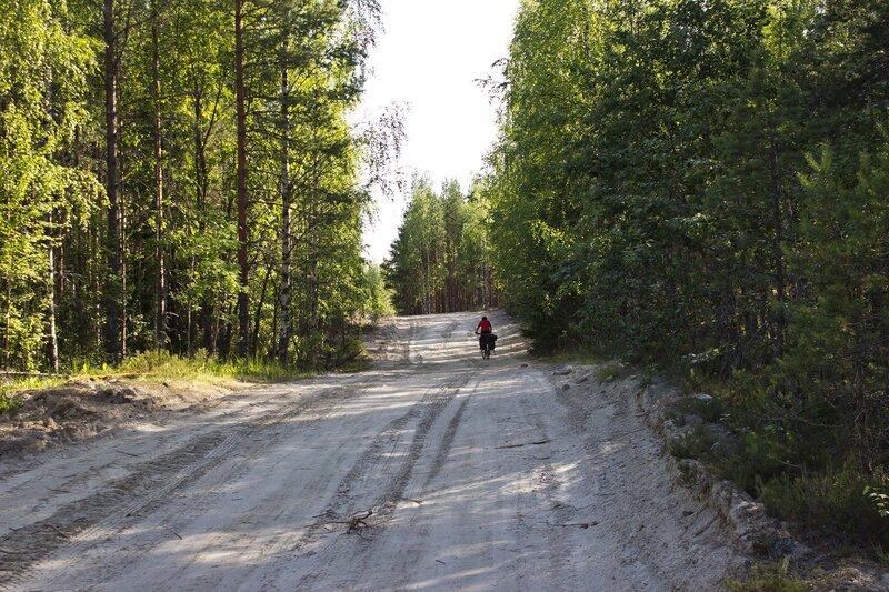 дорога между Фоминнаволок и Нелгомезеро