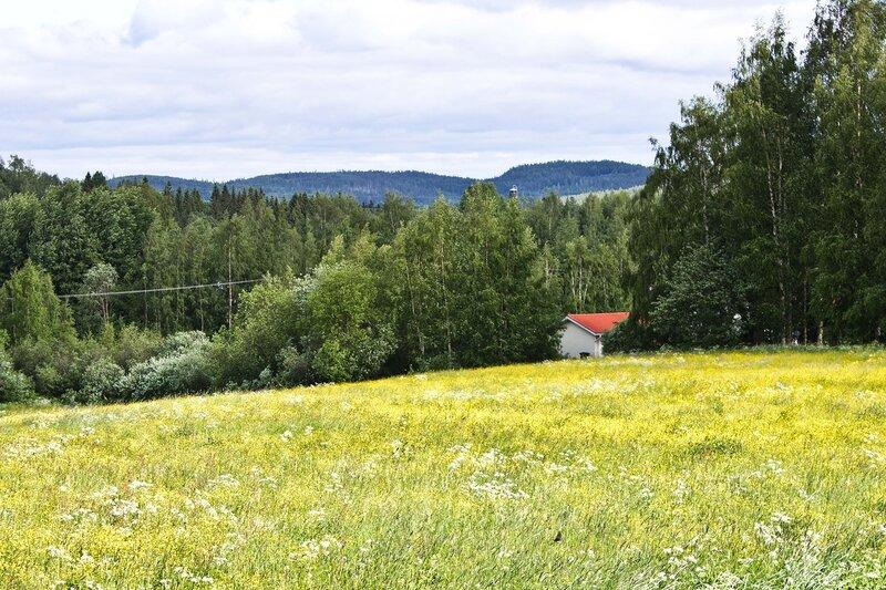 пейзаж за Ювяскюля (Jyvaskyla)