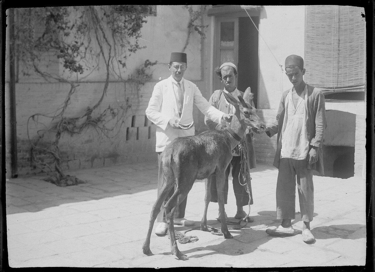Трое мужчин с одним осликом