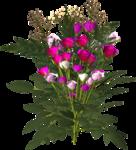 цветы (118).png