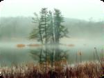 осень  озеро фон.png
