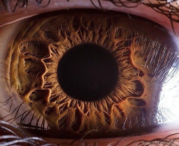 глаз человека макросъемка глазное яблоко радужка
