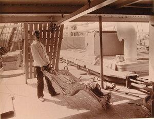 Носилки системы доктора Оффре, предназначенные для перемещения раненых по палубе плавучего госпиталя Орёл в вертикальном положении.