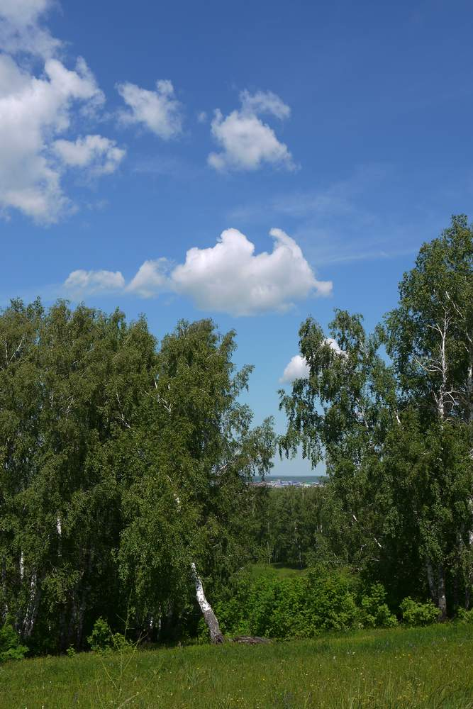 Самая высокая точка Татарстана