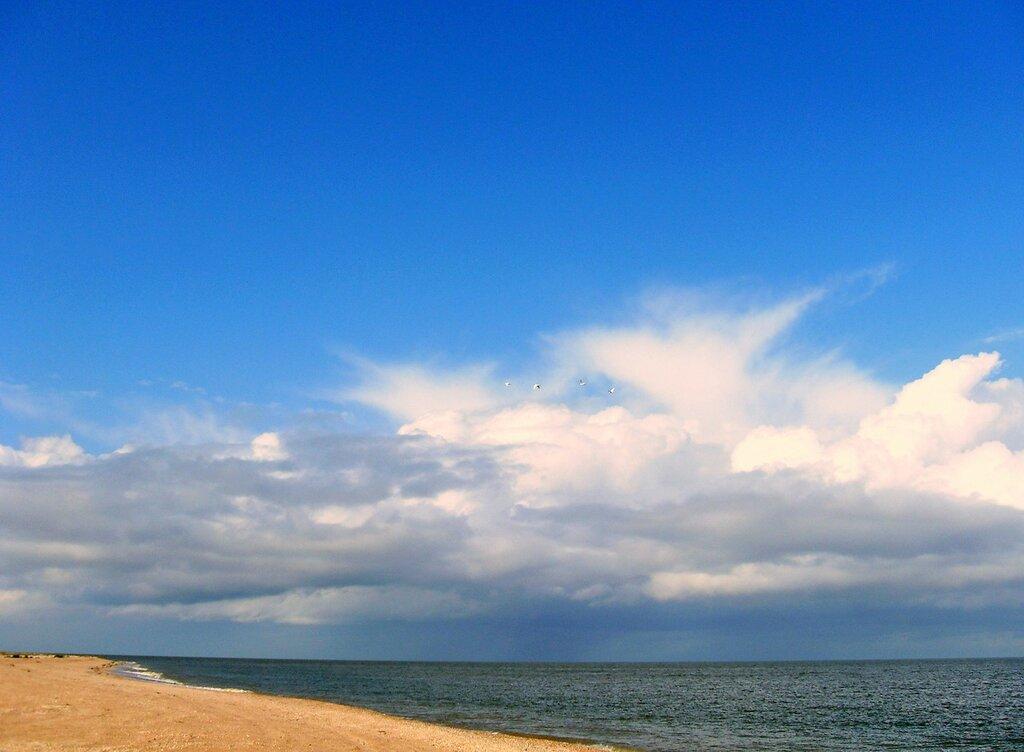 У моря ... SDC14818.JPG