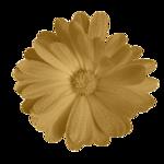 WA_Dreamn4everDesigns_flower 3.png