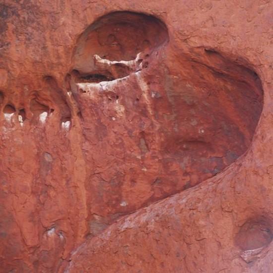 Сердце природного происхождения