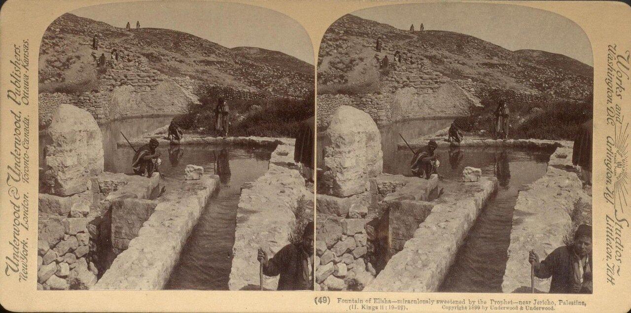 Иерихон, окрестности.  Источник пророка Элиша. 1899