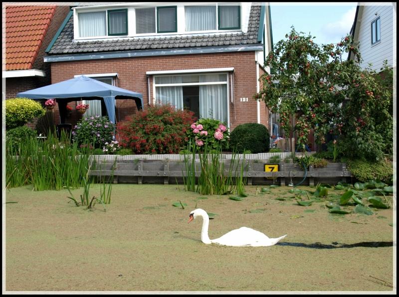 holland2 049.jpg