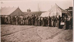 Очередь беженцев на перевязочно-питательном пункте №5 отряда Красного Креста В.М.Пуришкевича.