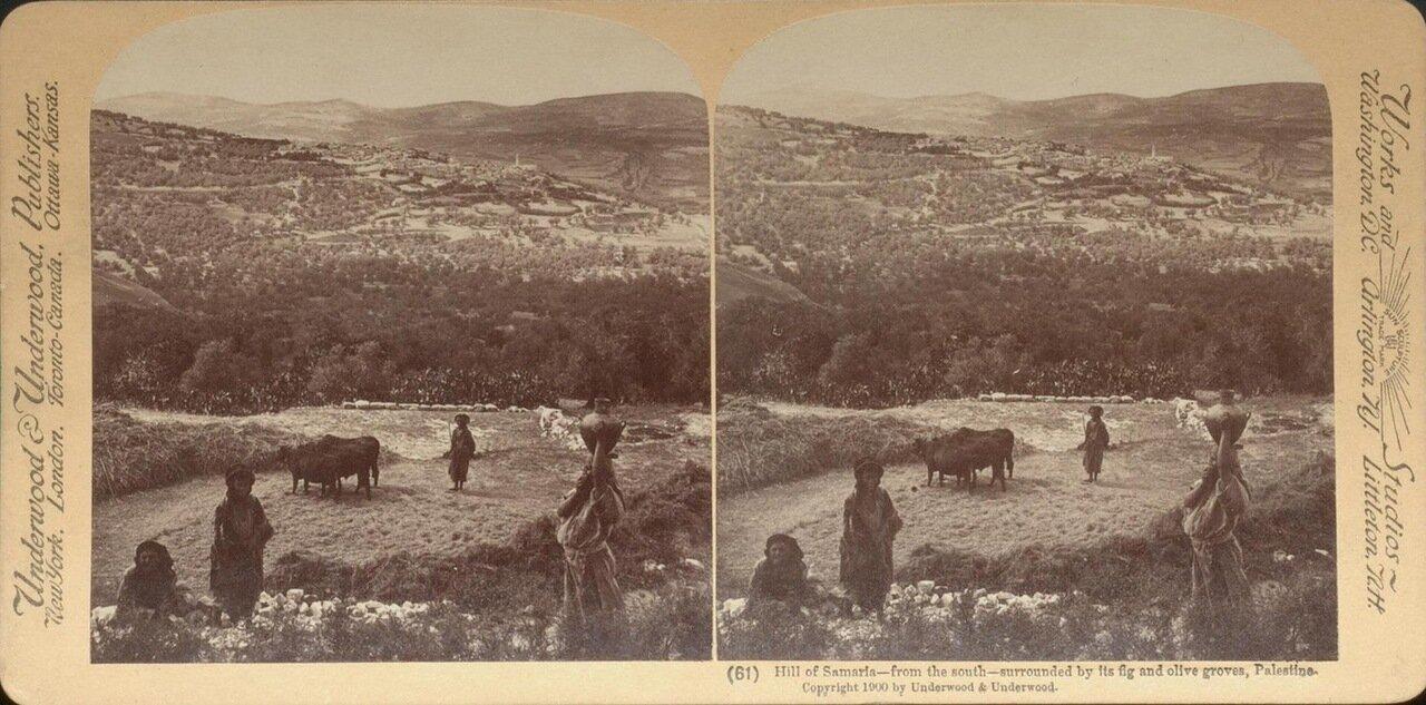 Холмы Самарии. 1900