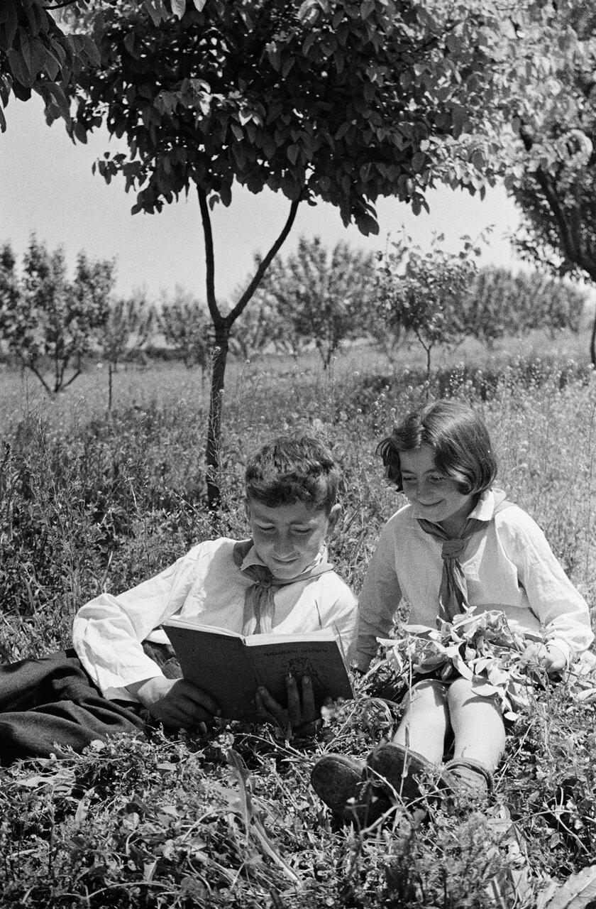 Армения. Школьники в саду
