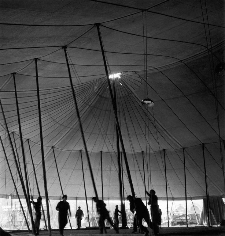 1949. Цирк приехал