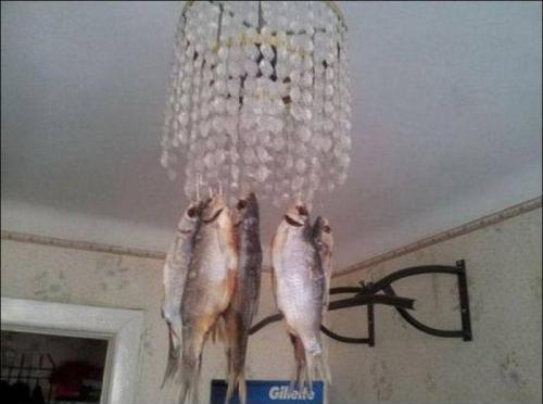 сушение рыбы на люстре