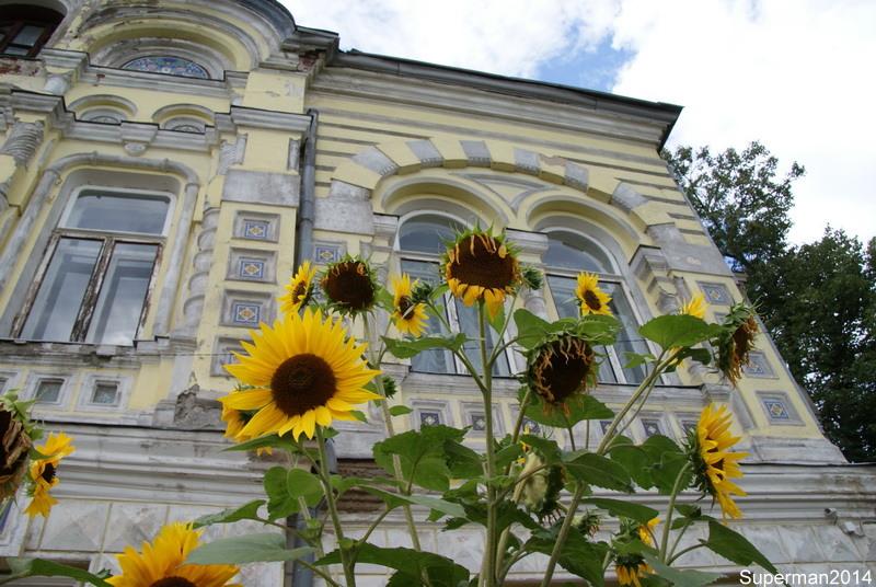 http://img-fotki.yandex.ru/get/6825/29308795.aa/0_91b1f_f0334329_orig.jpg