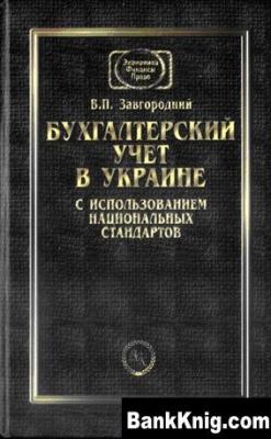 Книга Бухгалтерский учет в Украине  djvu  28,97Мб