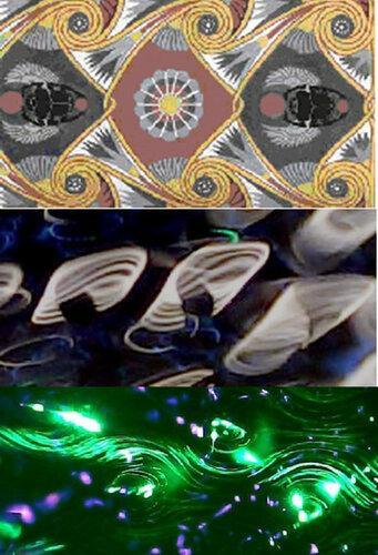 Новые картинки в мироздании 0_993d3_b3b79c1a_L