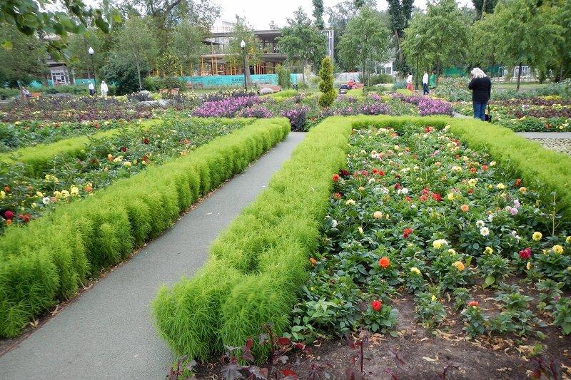 Цветочная клумба и садово-парковое искусство в парке им. Горького