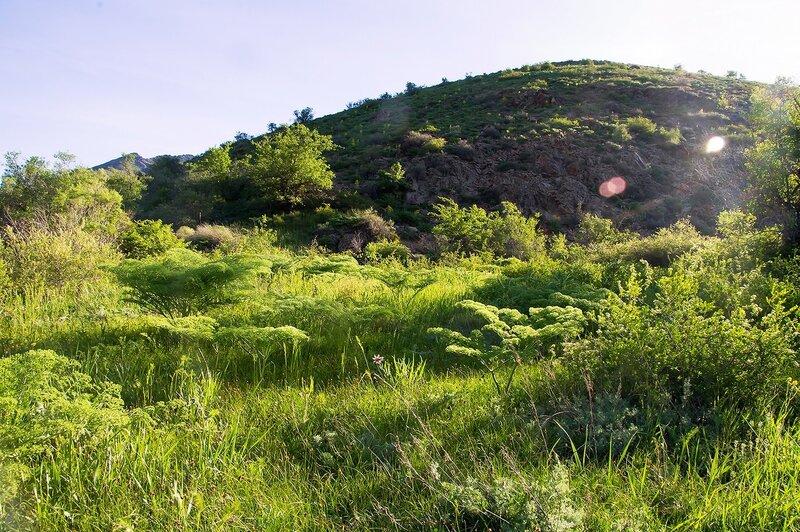 На Кызылатинке