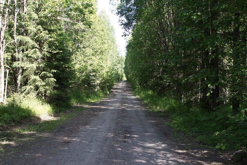 дорога на Линдозеро