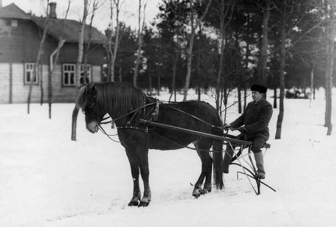 43. Санная упряжка бригады. 1908