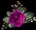 цветы (115).png