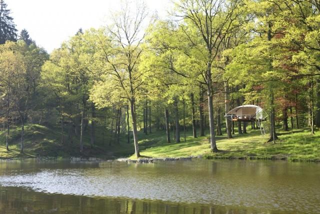 Tree house80.jpg