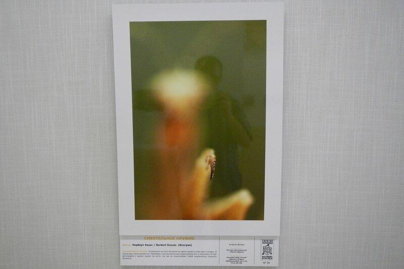 Смертельное оружие. Норберт Казас (Венгрия). Коготь богомола. На фестивале дикой природы Золотая Черепаха
