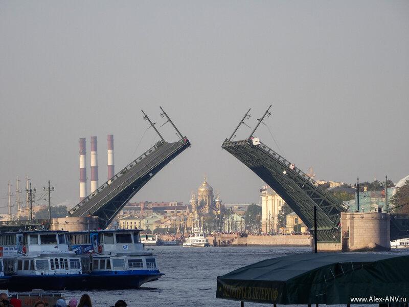 Редчайшее зрелище - разведёный Дворцовый мост среди бела дня. Обычно такое зрелище можно увидеть лишь ночью.