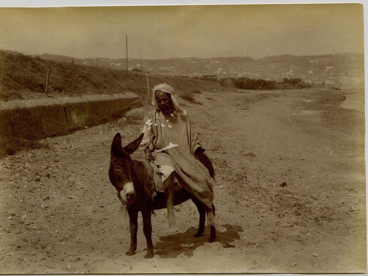 1880.Араб на ишаке