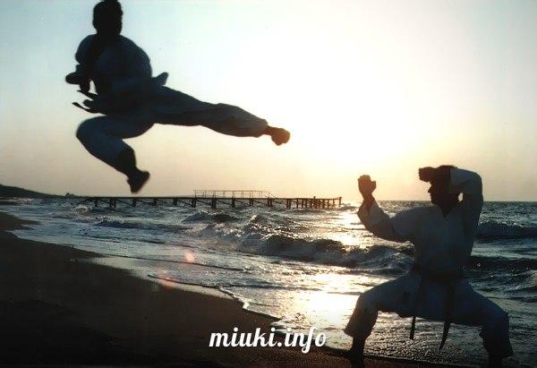Про японские боевые искусства