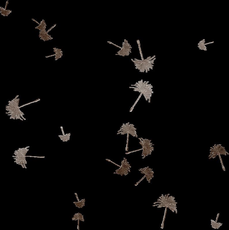 cvd inner storm dandelion seed scatter.png
