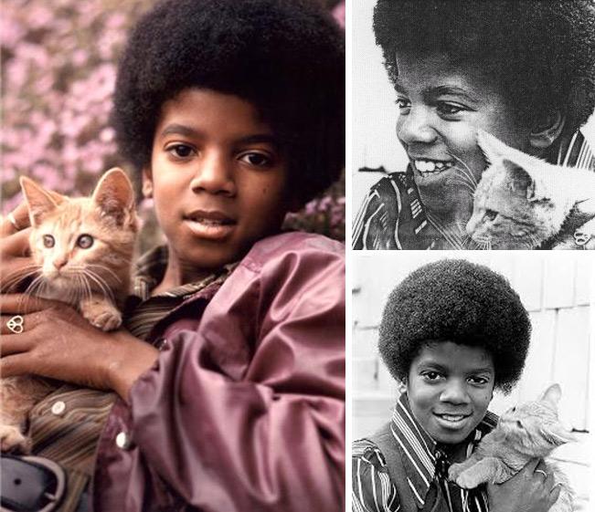 Майкл Джексон с кошкой