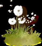grass (48).png