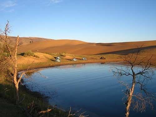 оазис в монгольской пустыне