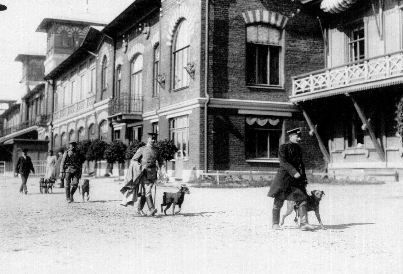 08. Владельцы собак с собаками на поводках на плацу во время смотра
