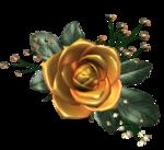 цветы (121).png