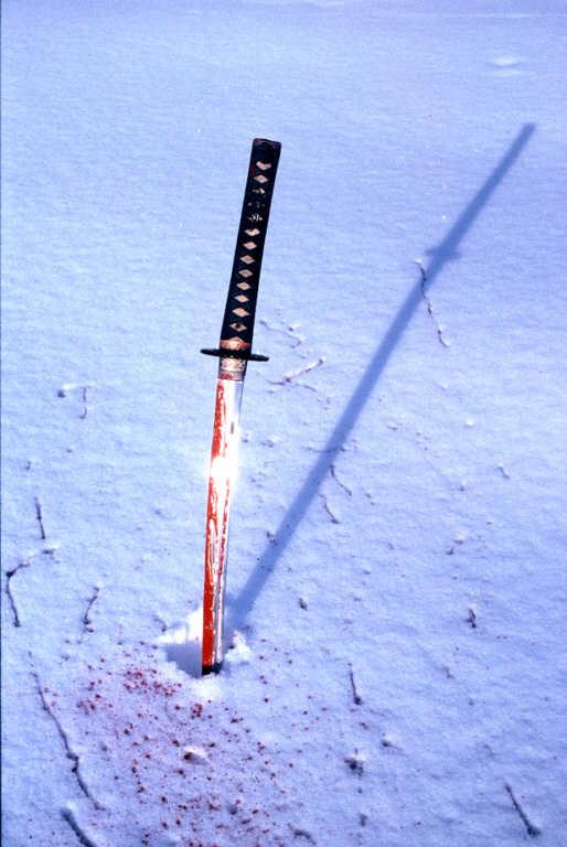 way_of_the_samurai.jpg